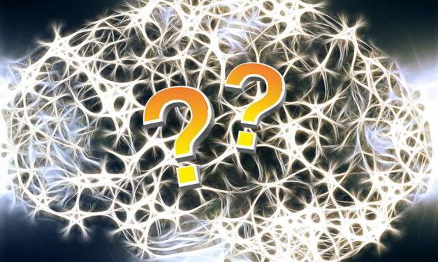 Sabías que las neuronas no solo están en nuestro cerebro